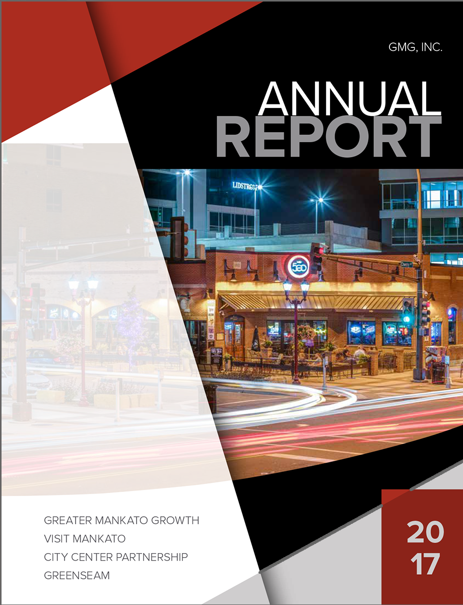 GMG, Inc. Annual Report